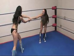 girls fight match in ring - Brie vs Gia