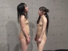 Catfight tube